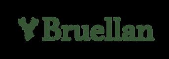 Bruellan logo-01.png
