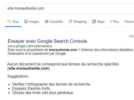 Je ne trouve pas mon site Wix dans Google !