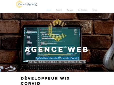 Améliorez le code de votre site Wix avec Ludo de Corvid agency
