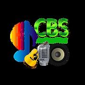2020 AV New Logo.png