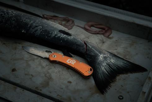 buckknife.jpg