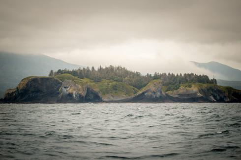 island fog 2.jpg