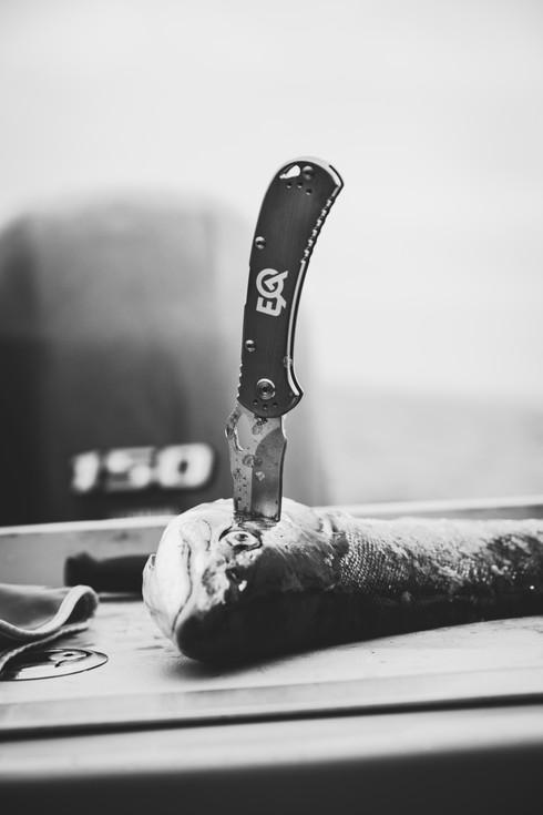 buck knives vert.jpg