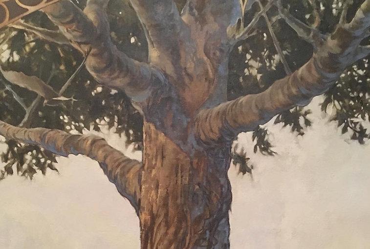 Soloman's Magic Life Tree