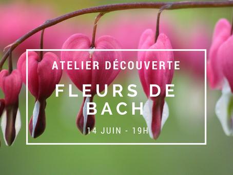 Atelier Fleurs de Bach