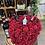 Thumbnail: Feteasca Neagra 555 Dracula and rose heart