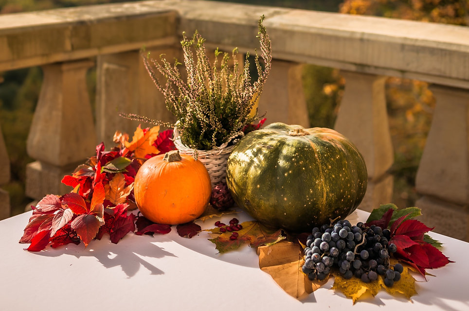 Beautiful Autumn set of pumpkins, grapes and leaves with a view over the hill_edited.jpg