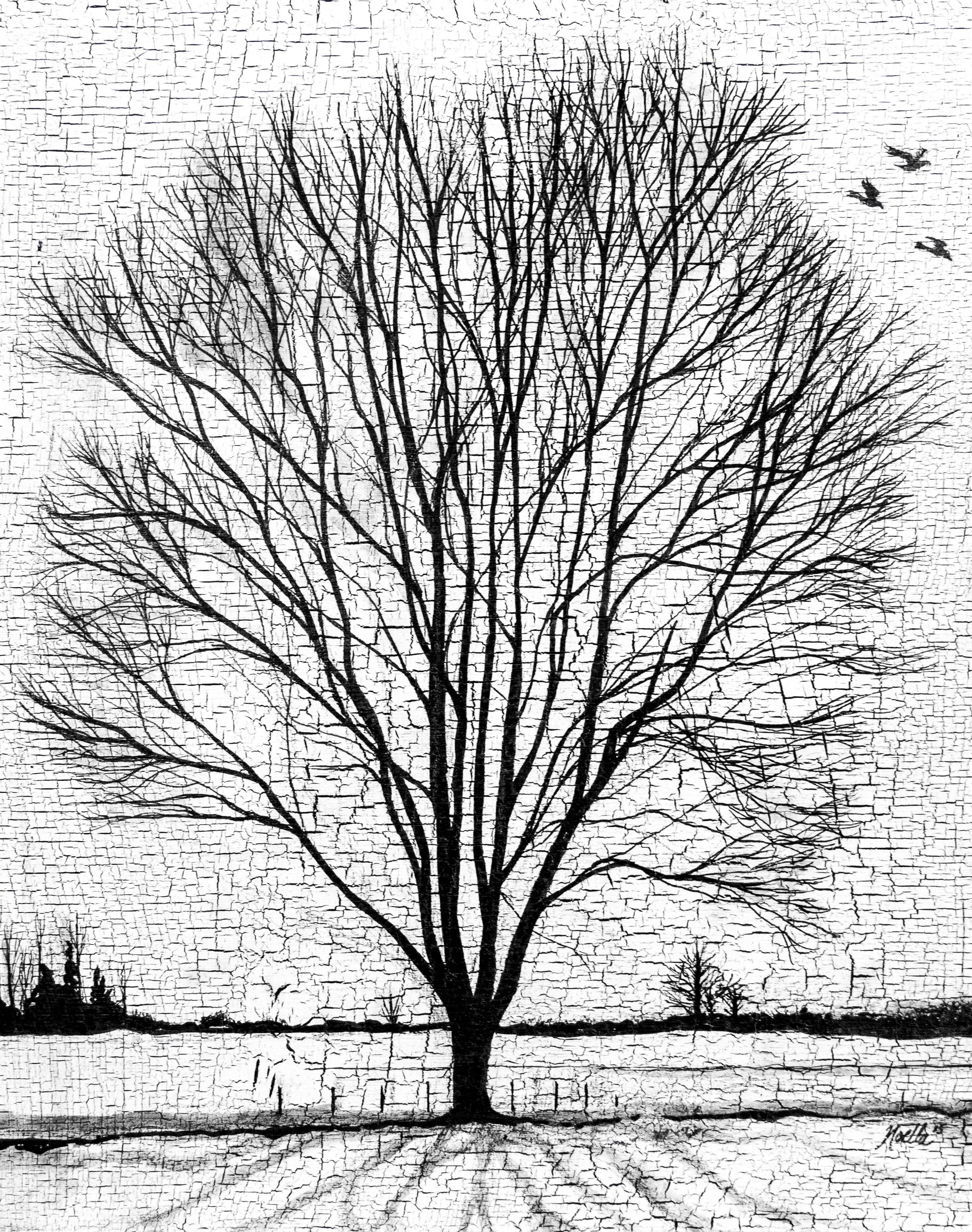 Joanne's Tree