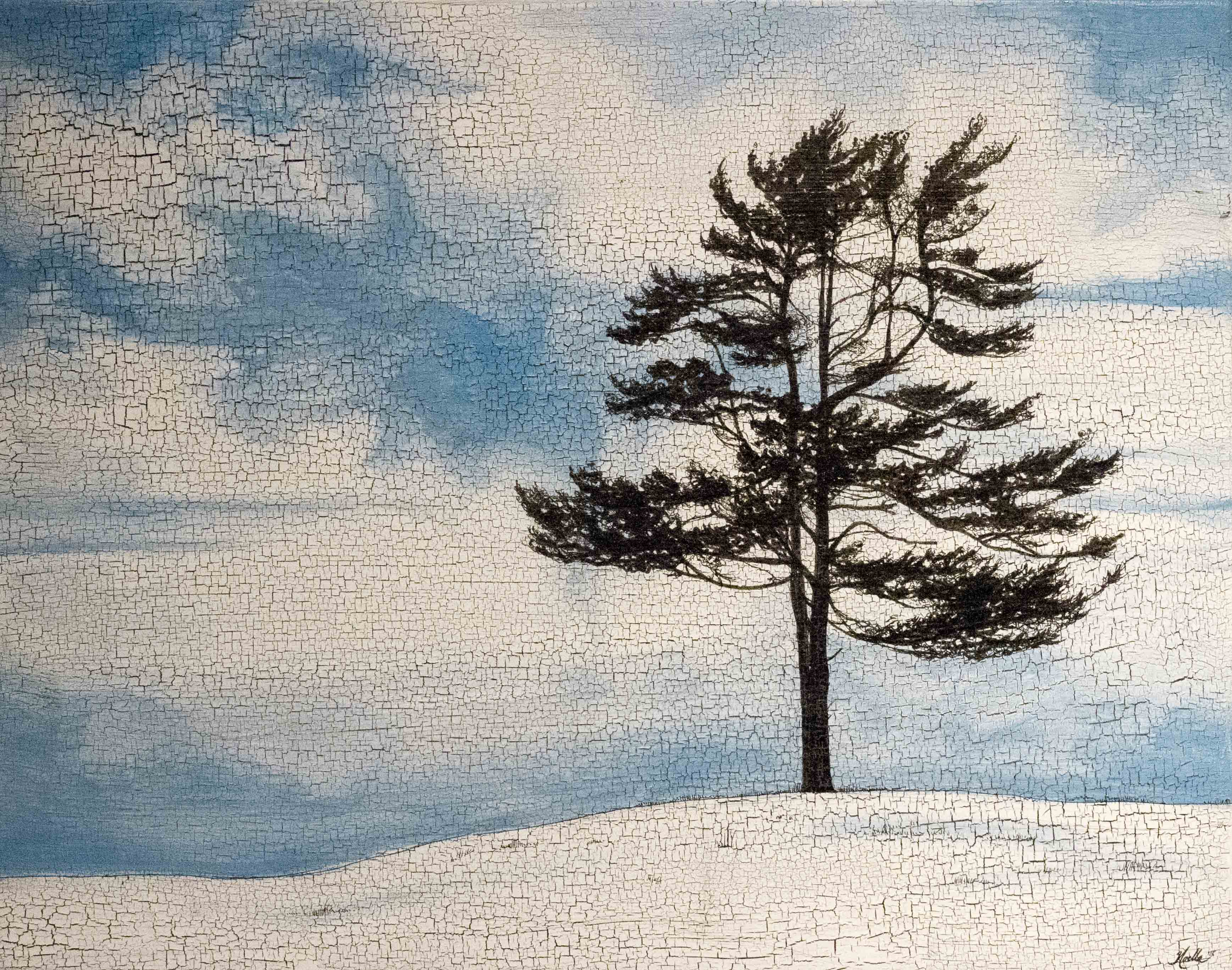 Pine II