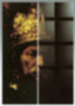 SCHOTT MIROGARD® Hans Trautner