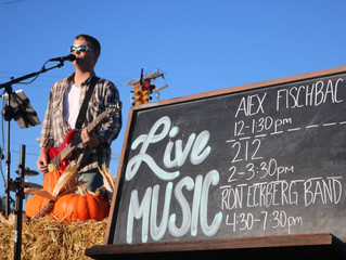 Fall Fest on Main Wrap-Up