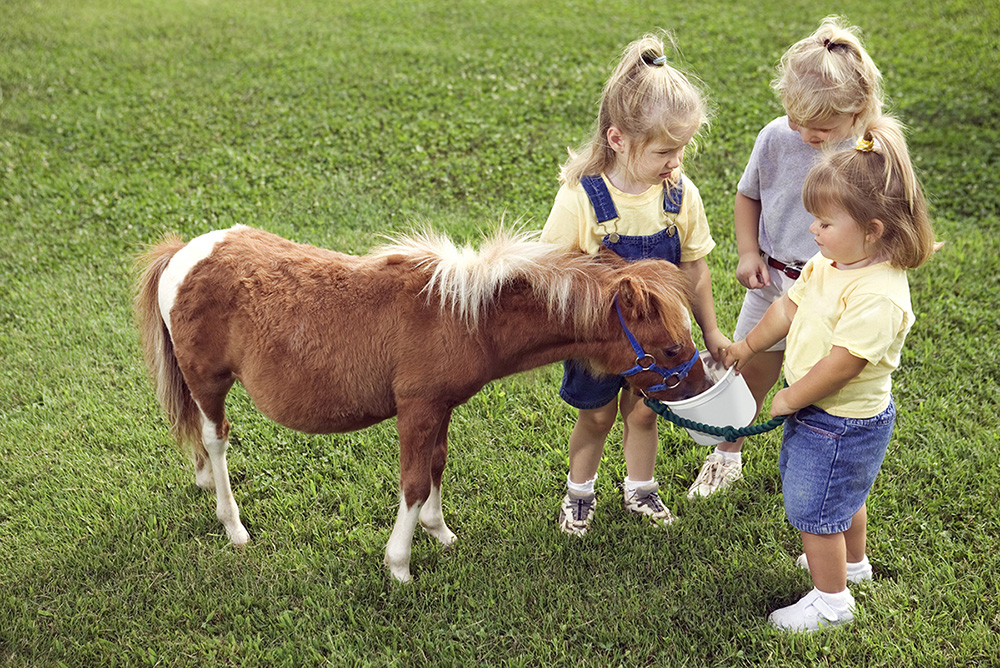 Kids with Pony