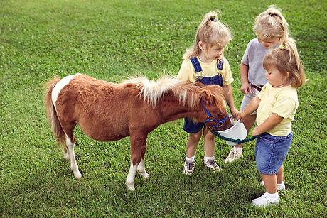 Los niños con Pony