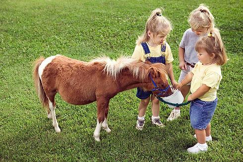 Les enfants avec poney
