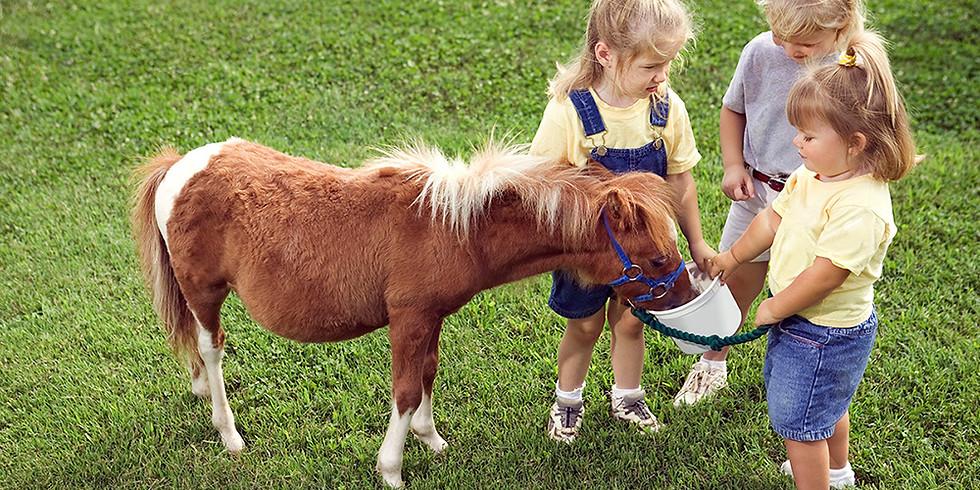 Pony Rides with Tidworth Garrison Saddle Club