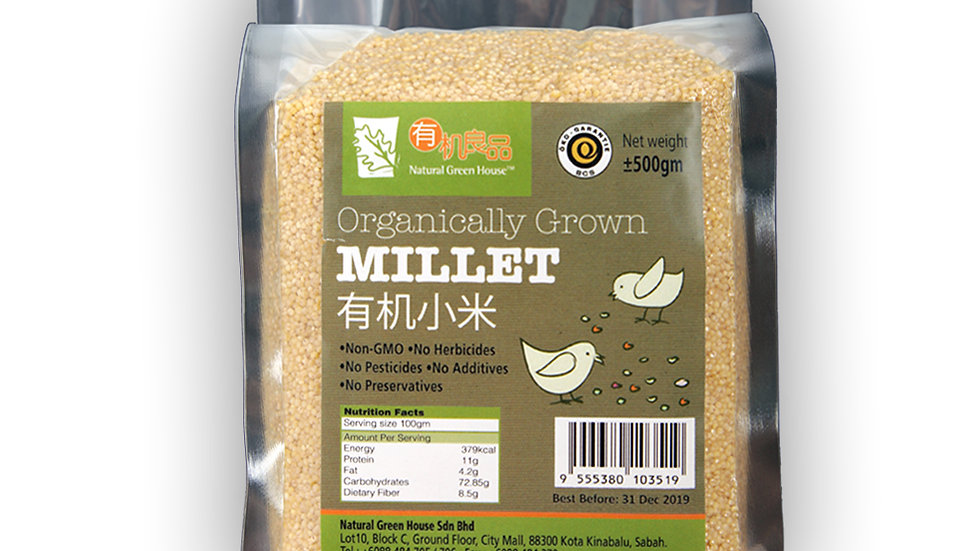 Organically Grown Millet 有机小米