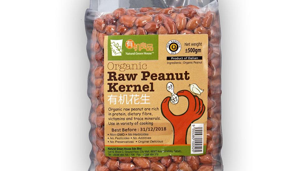 Organic Raw Peanut Kernel 有机花生