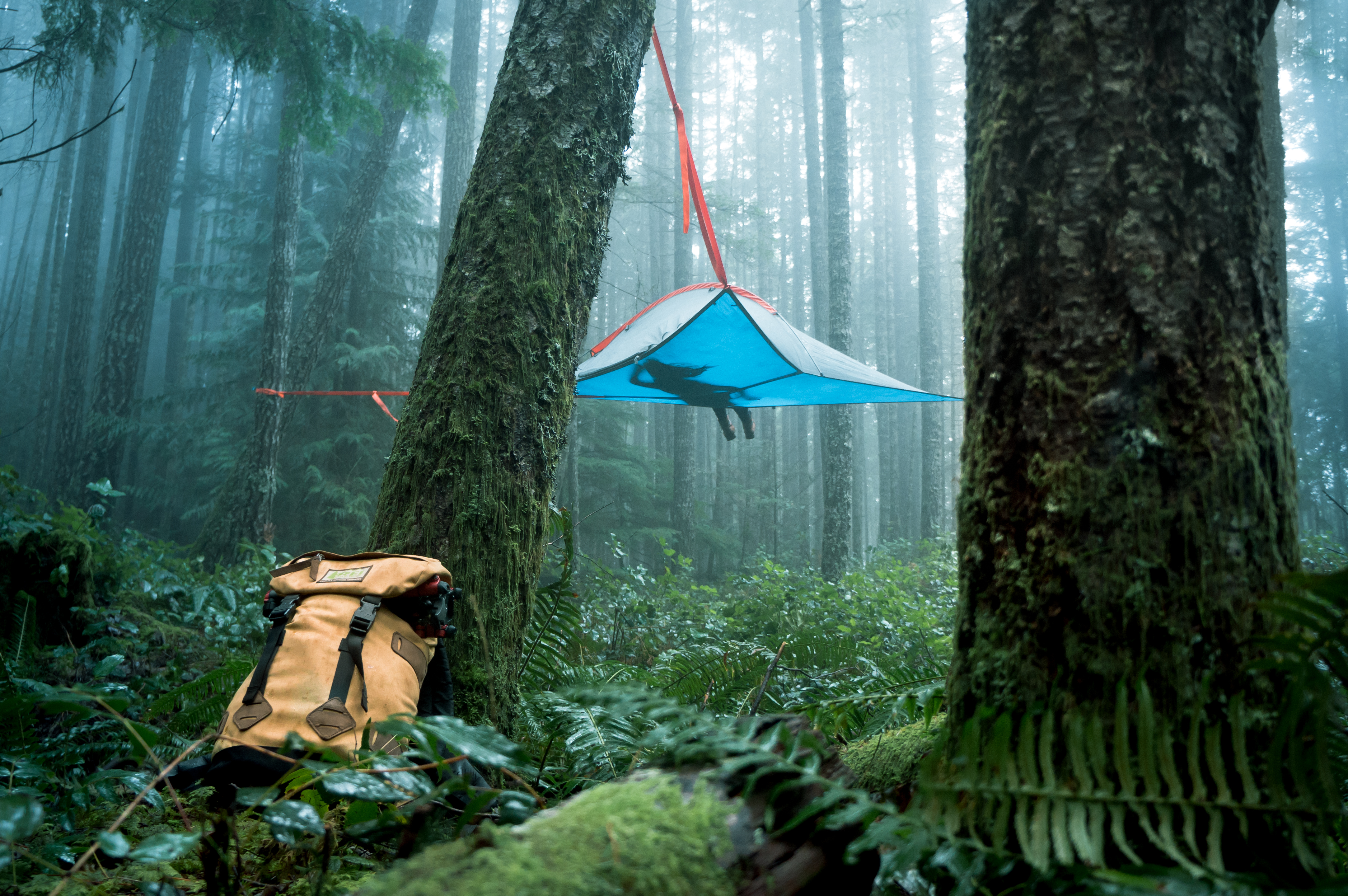TENTSILE - FOREST FLOAT