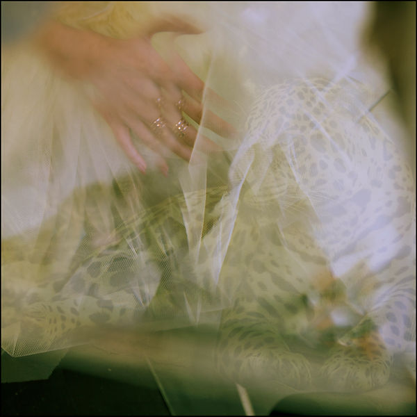 LOOK 10 Eduardo Kohn Still.jpg