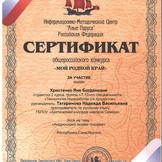 Сертификат уч. НИДС Христенко Яны.jpg