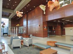 atrium rideout DSCN2995
