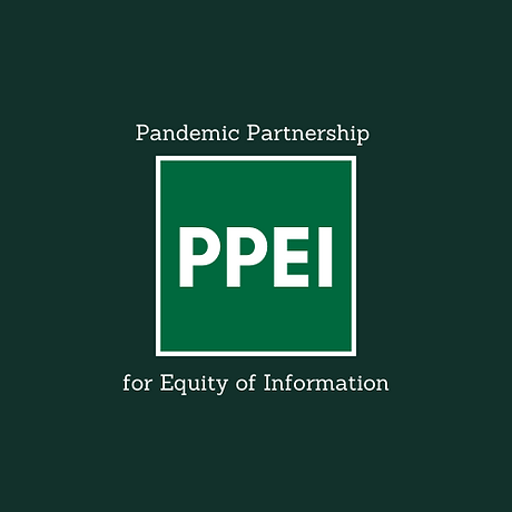 PPEI Logo