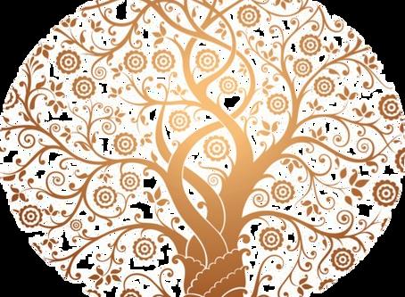 Bienvenue sur mon Blog dédié au bien-être et à la santé au naturel