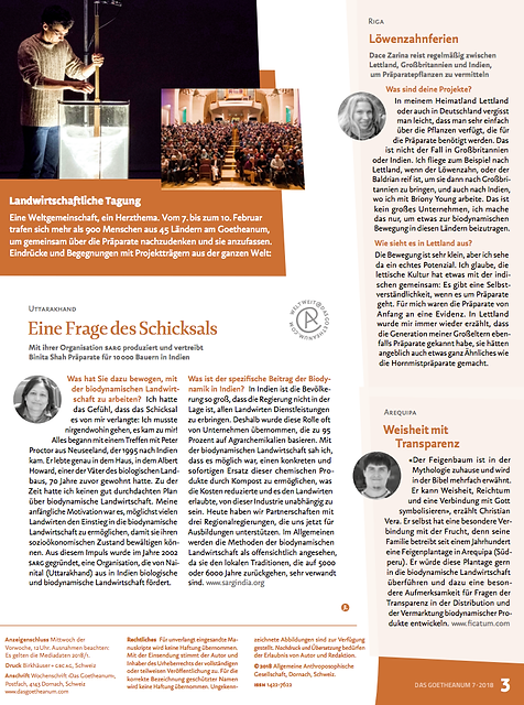 Goetheanum Interview (1).png