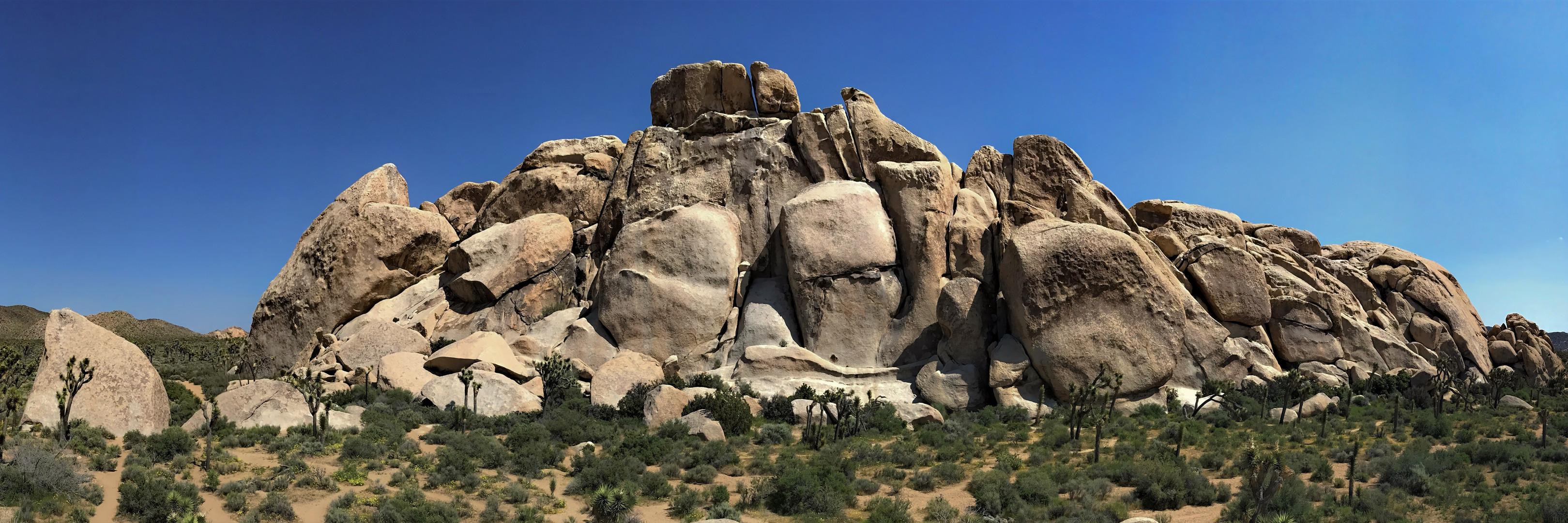 Large Boulder 12x36.jpg