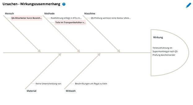 Fishbone Diagram_zoom.png