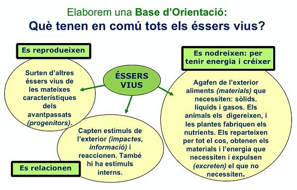 BO_essers-vius.png