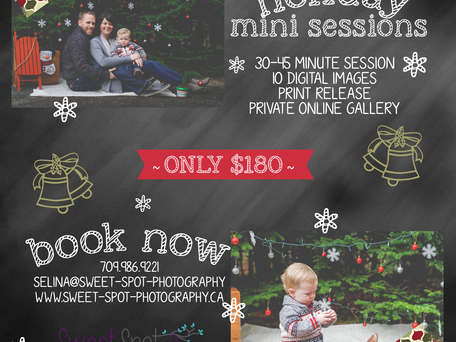 {SSP} CHRISTMAS MINI SESSIONS
