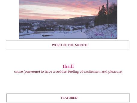 {SSP} February Newsletter | 2017