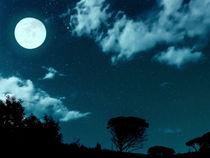 UK Dark Sky Glamping Breaks In A Stargazer Luxury Bell Tent