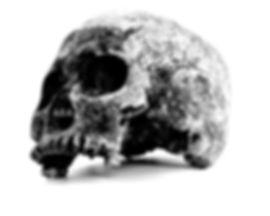 borlneo22_web.jpg