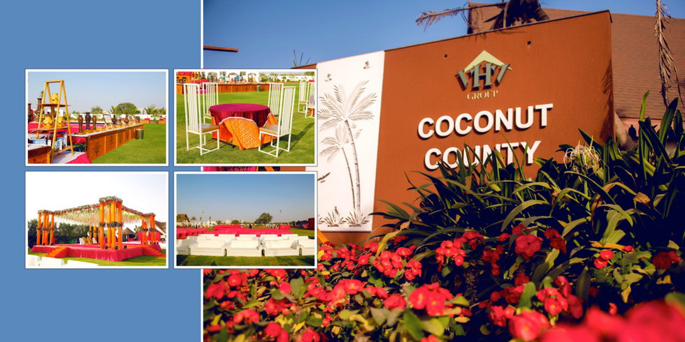 Coconut county 12.jpg