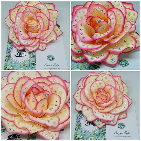 Pink Tip Cream Roses