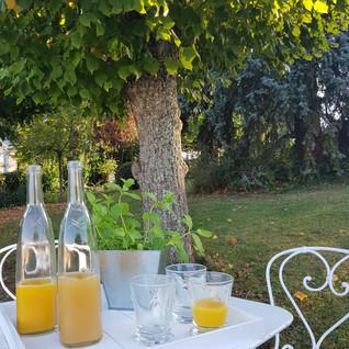 Clos-des-Campanules-maison hôtes-jardin.