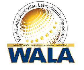 Lilah WALA logo 2021.png