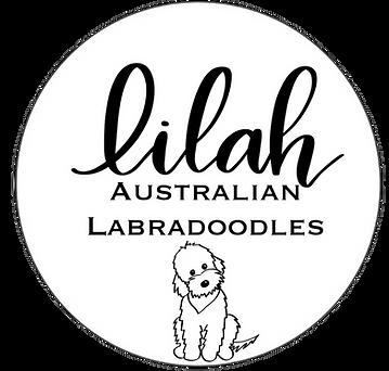 Lilah doodle logo.png