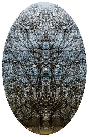 1John Keller_Gothic Symmetree.jpg