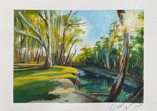 New South Wales | Gouache
