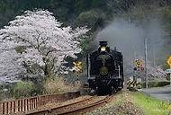 General sakura train.jpg