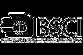 bsci-logo-1000x668-boyut_1000x_edited_ed