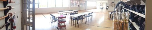 Kendo Room