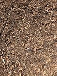 Blended Arbor