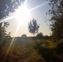 A beautiful footpath through the farmland in East Bergholt