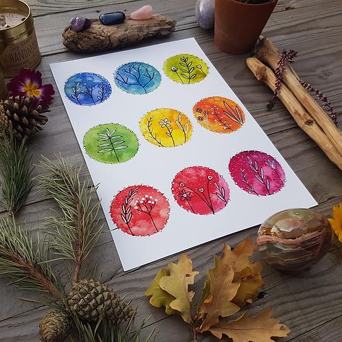 Rainbow Wildflowers Art Print