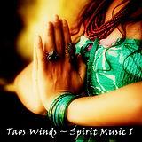 Taos Winds link