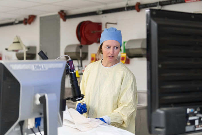 """""""Women of invention: How Rochester faculty find success as patent-holders"""""""